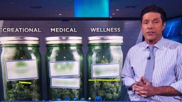 Como os Traders investem legalmente em Cannabis Medicinal